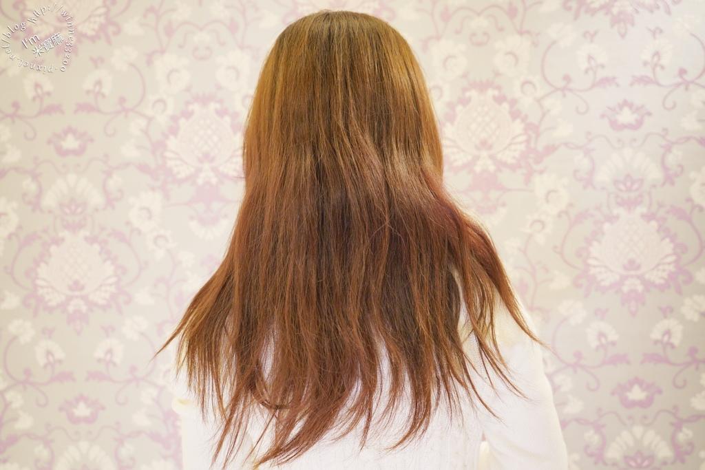 摩洛哥優油 護髮油推薦 (5)